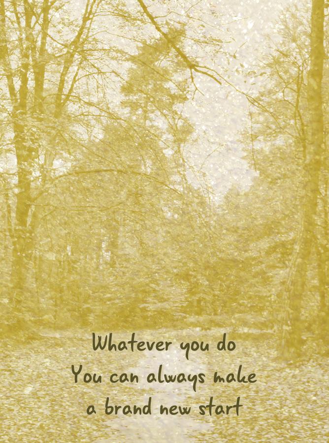 whatever you do